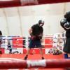 Бокс взрослые 17+