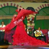Театр восточного танца «Дива»