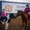 Семейный конно-спортивный клуб