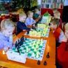 Шахматы в «Зелёной школе» (на ул. Кемеровской)