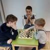 Шахматы, судоку