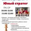 Азартные шахматы  - стратегия и характер.