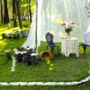 Эко-садовая терапия (на ул. Щербакова)