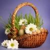 Тростинка (плетение и флористика)