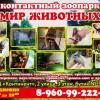 Контактный зоопарк «Мир животных»