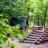 Экскурсия «Чудесный сад» с мастер-классом «Декор спила»