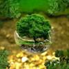 Истоки: природа, человек, культура