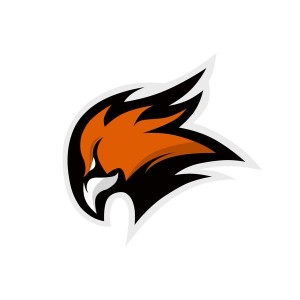 Женская хоккейная команда «Феникс»