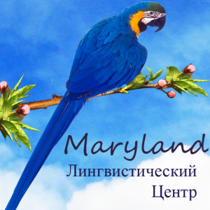 Лингвистический центр Maryland: курсы иностранных языков