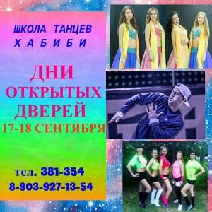 Школа танцев «Хабиби» (на ул. Конева)