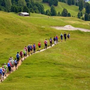 Путь к вершинам (туризм и краеведение)