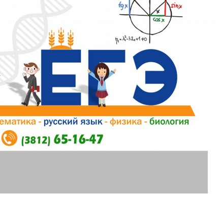 Подготовка к ЕГЭ по математике, русскому языку, физике и биологии