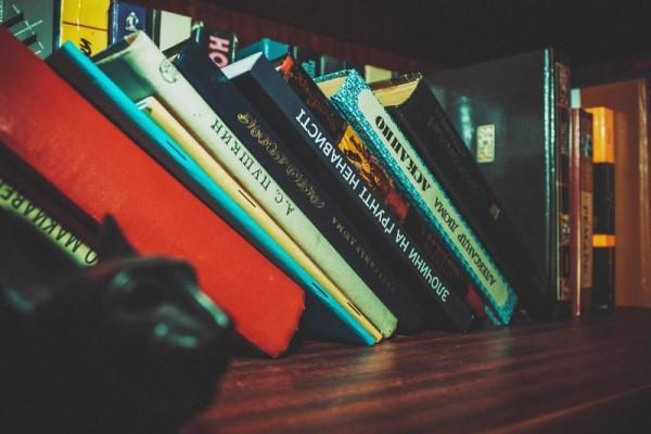 Русский язык: за страницами учебника